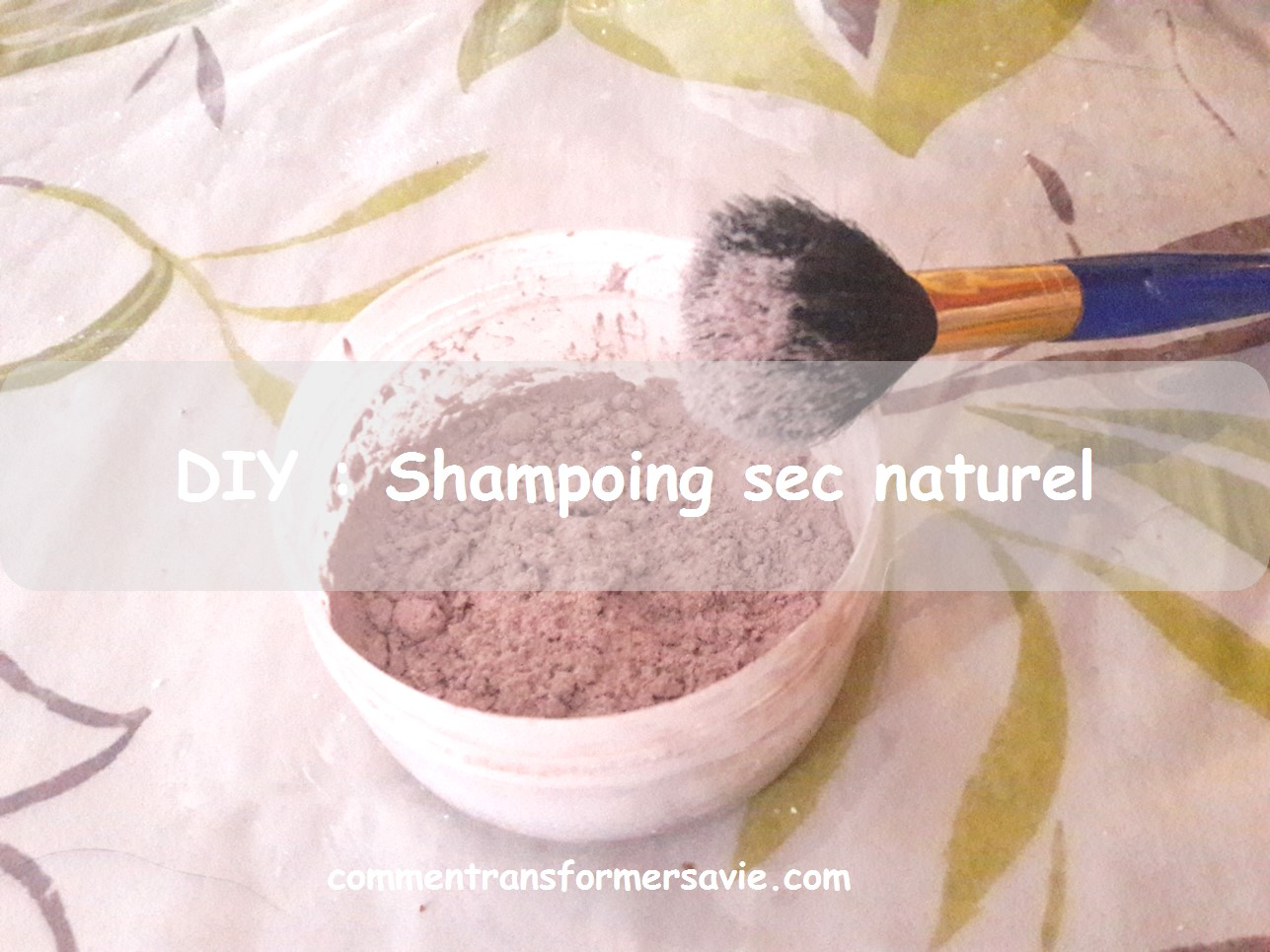 DIY Shampoig sec