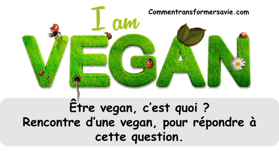 Application de rencontres Vegan